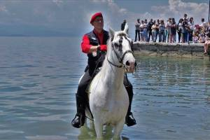 Horse Riding, Symmetron Suites: apartments family suites Pelion kalamos beach